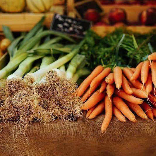 Bauernmarkt & Wochenmarkt – Petersberg